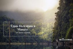 Amazonia Cover